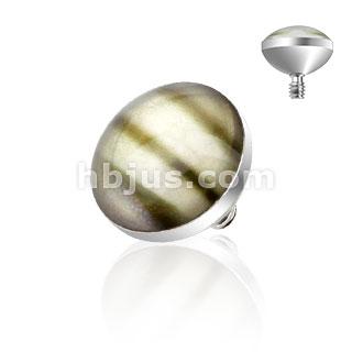Embout à dôme en coquillage pour implant microdermal