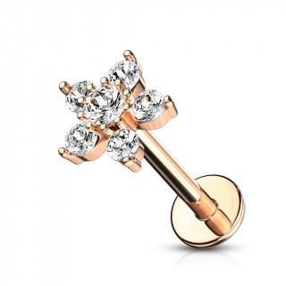 Piercing labret / cartilage cuivré à étoile zirconiums